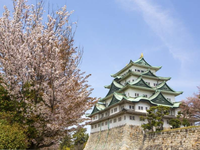 10 best places to see japans famous cherry blossoms 6