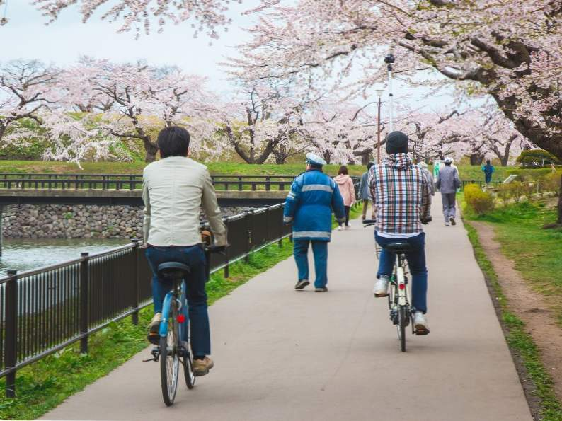 10 best places to see japans famous cherry blossoms 8