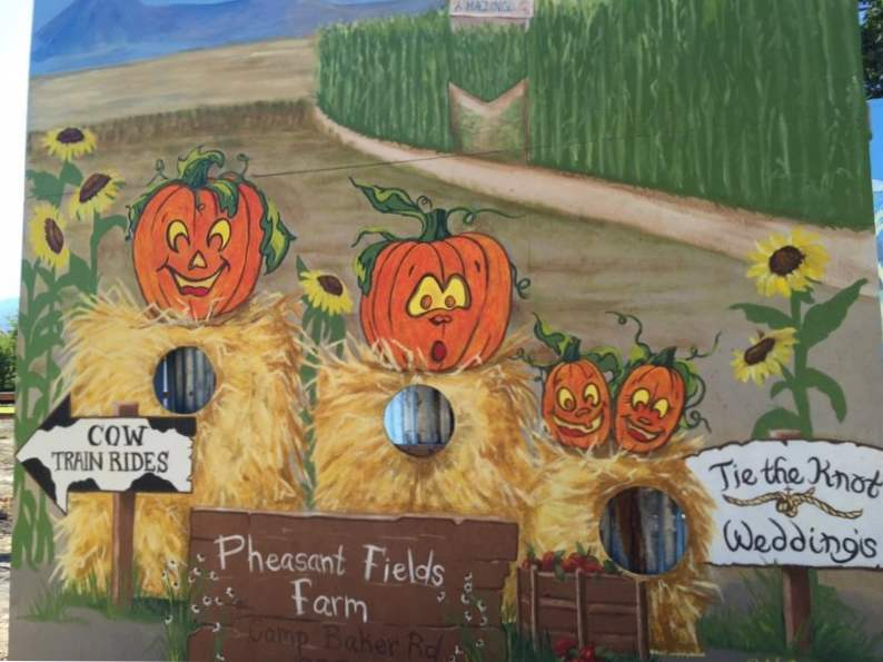 10 best pumpkin patches to celebrate fall in oregon 10