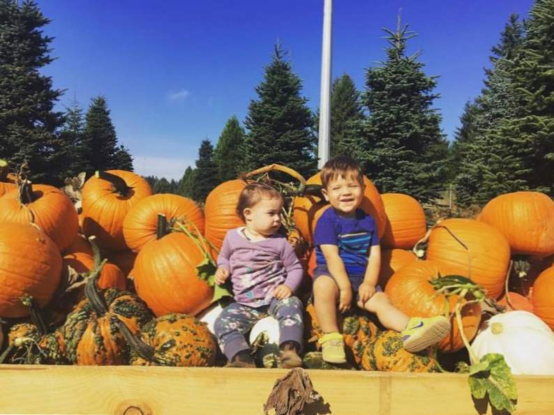 10 best pumpkin patches to celebrate fall in oregon 4