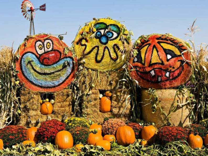 10 best pumpkin patches to celebrate fall in oregon 9
