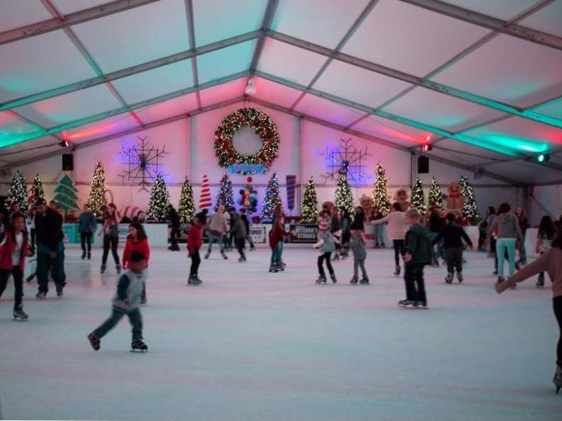 10 best things to do in december in florida 4