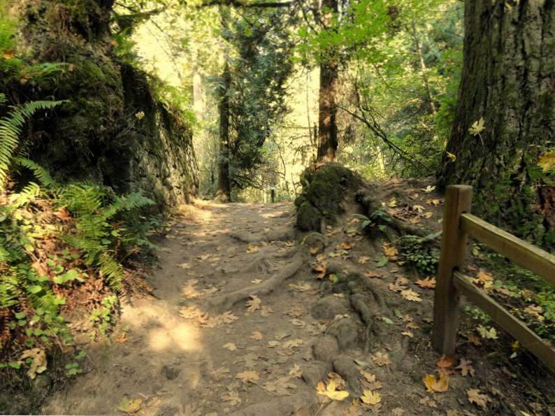 10 best things to do in portland oregon for 10 or less 5