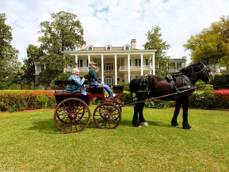 10 best things to do in thomasville georgia