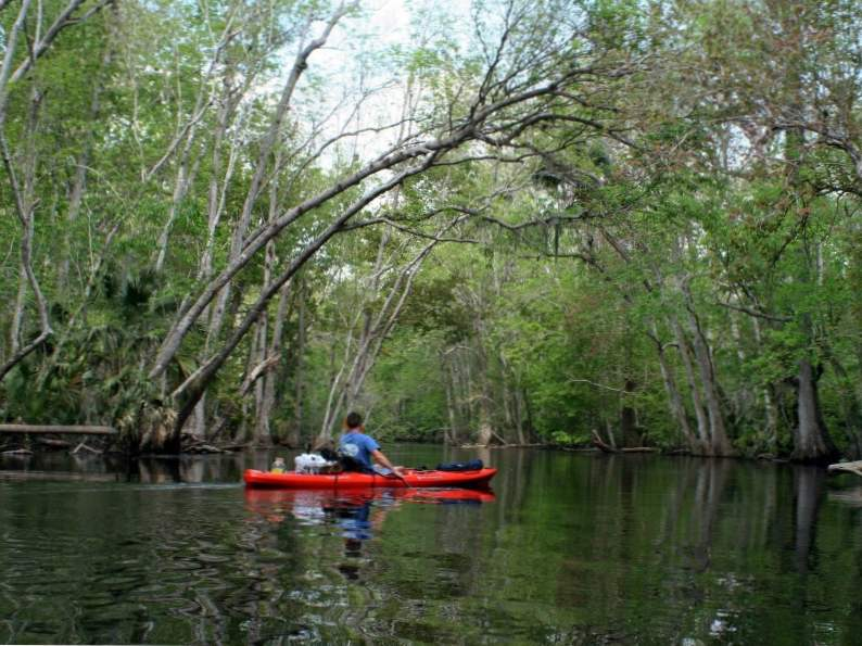 10 best things to do on anna maria island florida 7
