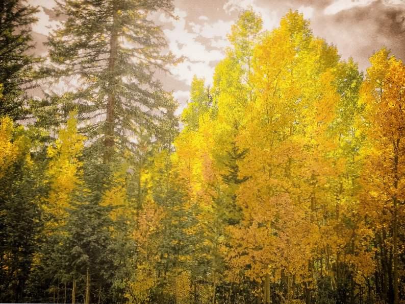 10 most scenic fall drives in colorado 10