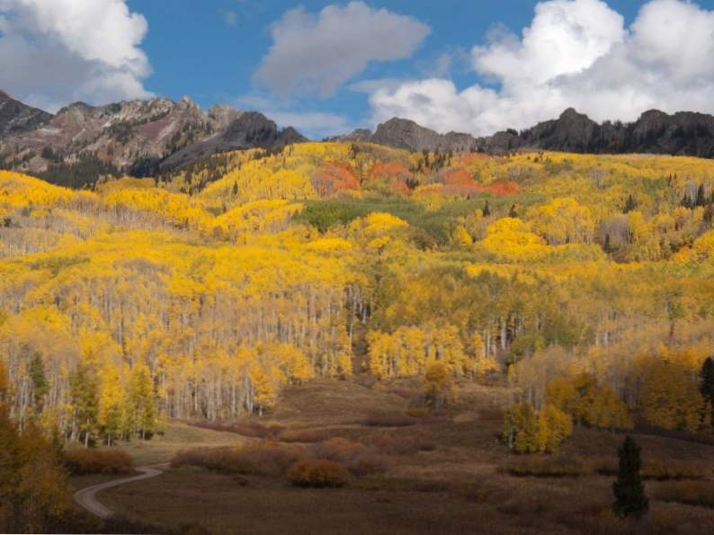 10 most scenic fall drives in colorado 4