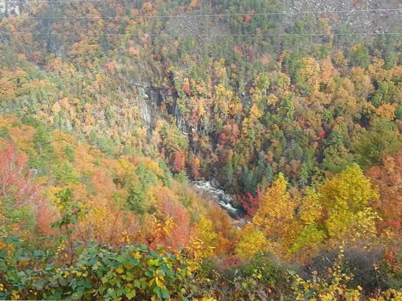 10 reasons to visit north georgia 5