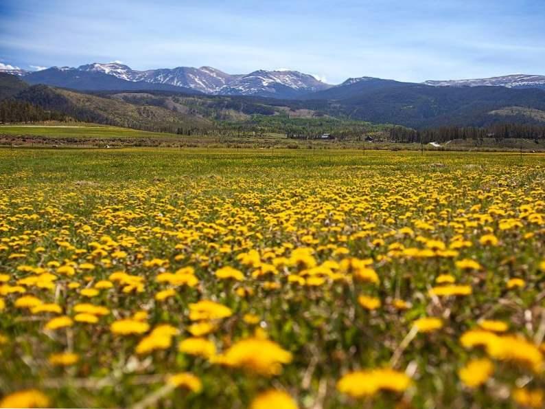 13 reasons to visit devils thumb ranch in colorado