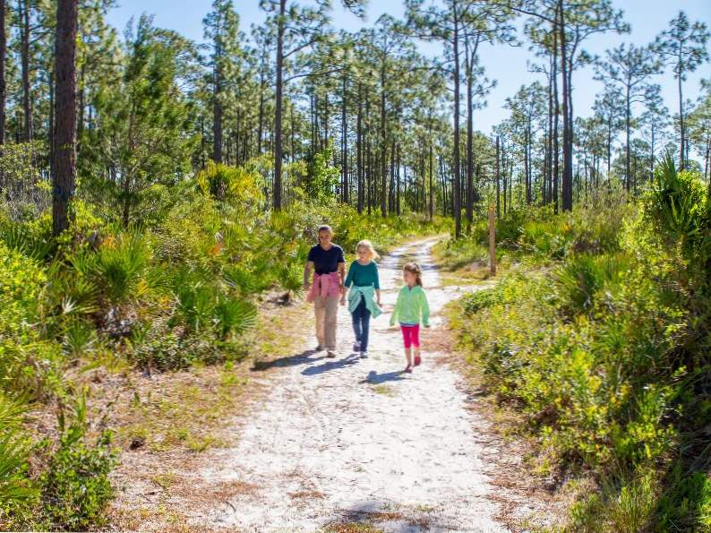 15 best free things to do in orlando florida 14