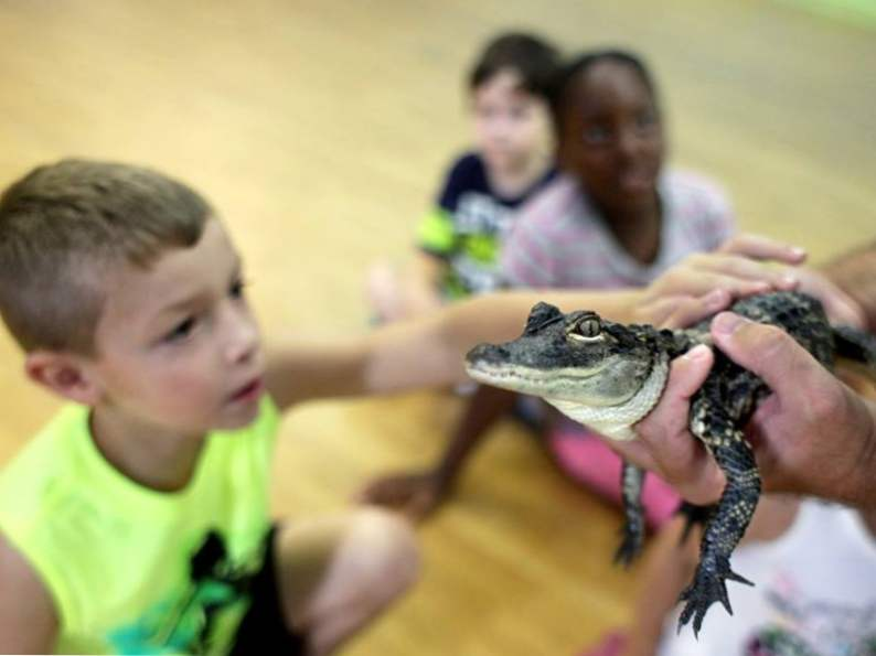 6 best educational trips for kids in north carolina