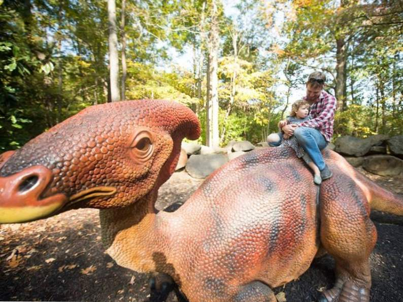 6 best educational trips for kids in north carolina 3