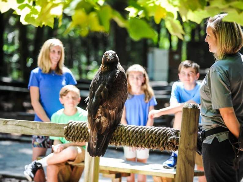 6 best educational trips for kids in north carolina 4