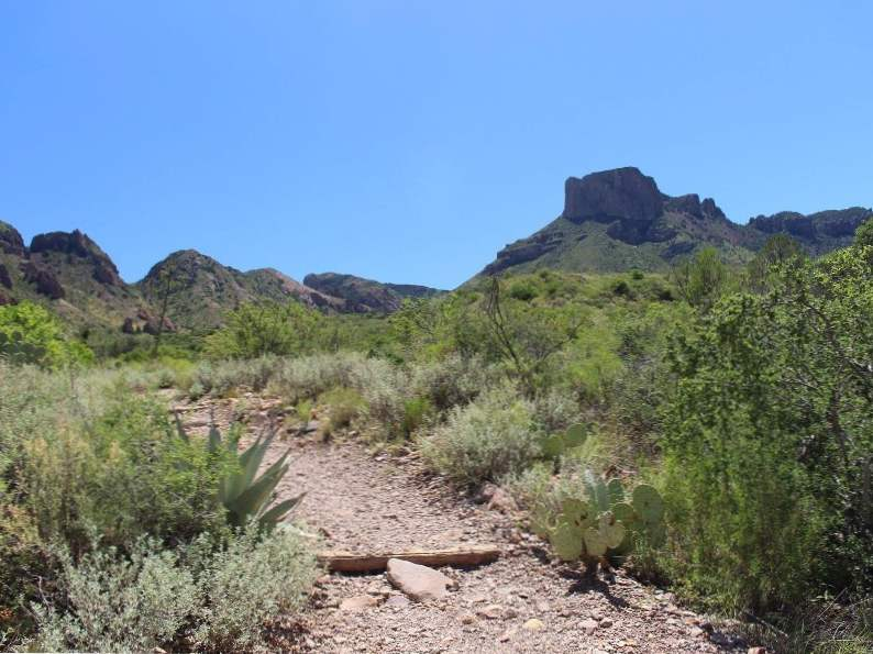 7 best hikes in big bend national park 3