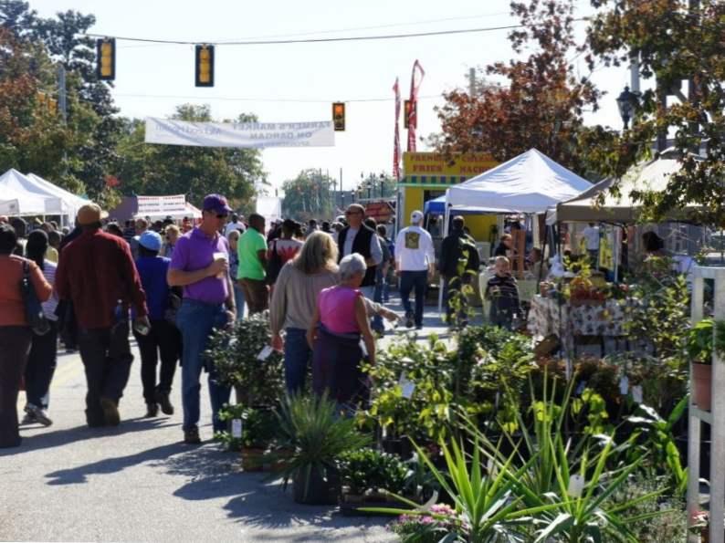 7 fun fall festivals to enjoy in south carolina 2