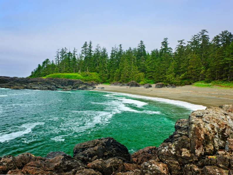 8 best experiences to have on vancouver island 3