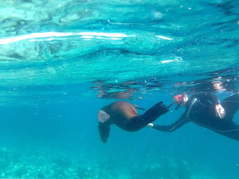 8 best places to snorkel in
