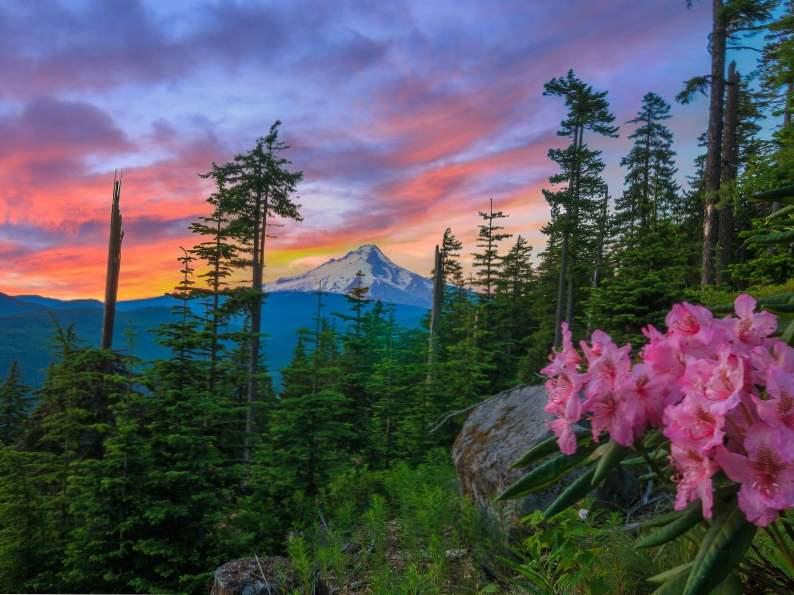 8 best scenic hikes in oregon 2