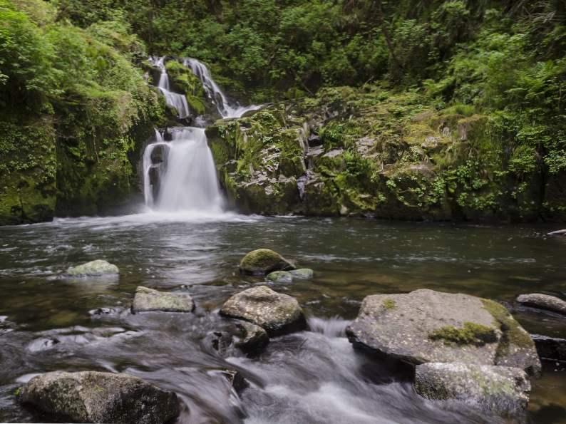 8 best scenic hikes in oregon 5