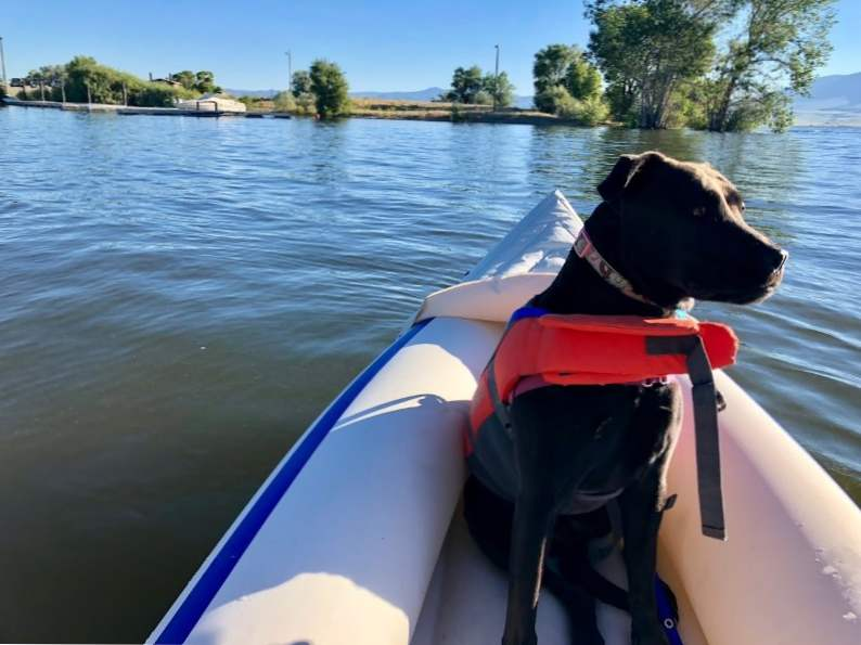 8 best things to do in helena montana 5