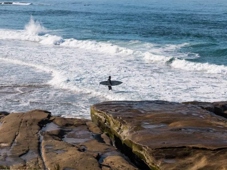 8 best things to do in la jolla california 3