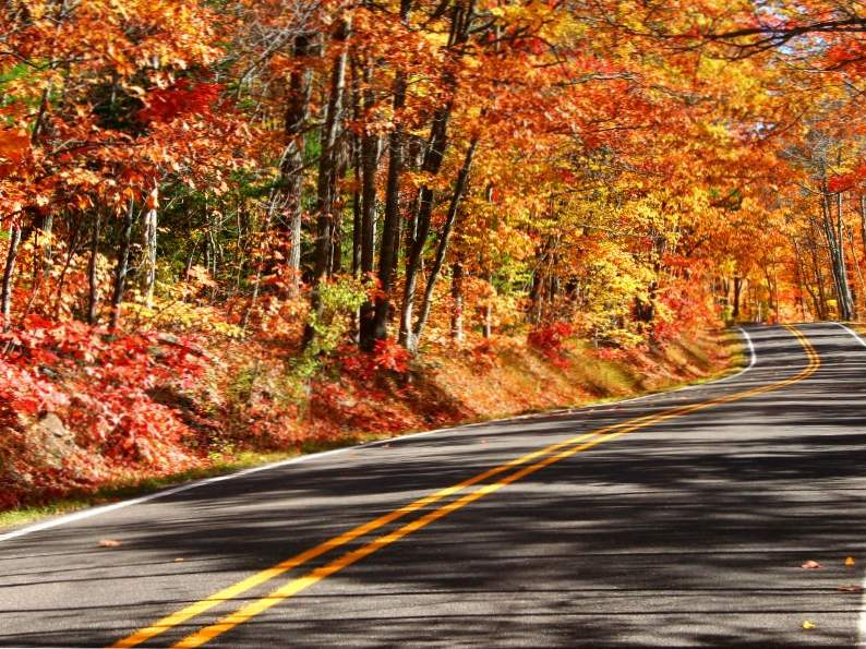 8 best things to do in michigan in fall