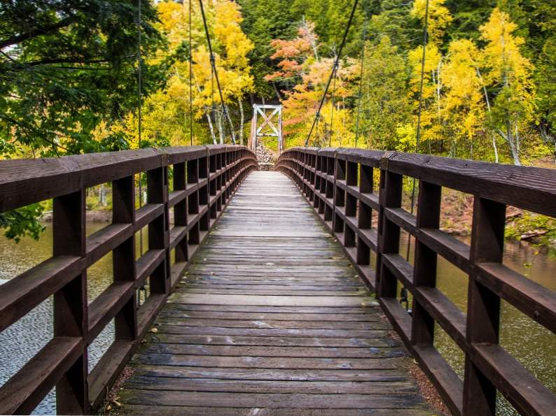 8 best things to do in michigan in fall 3