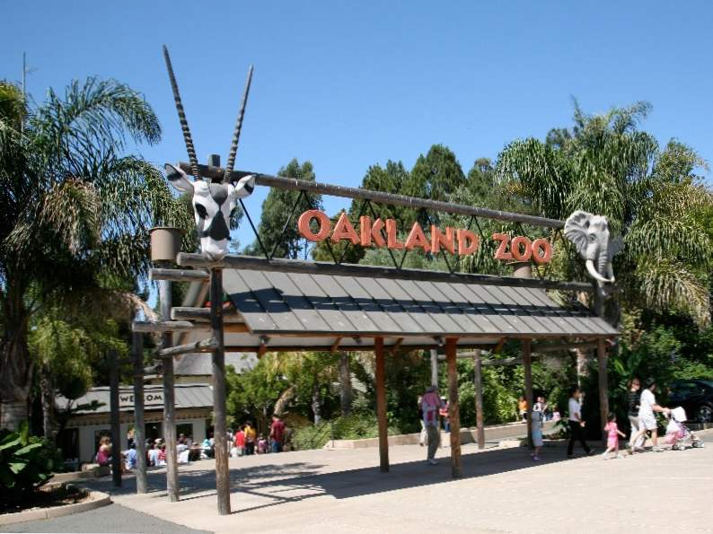 8 best things to do in oakland california 5