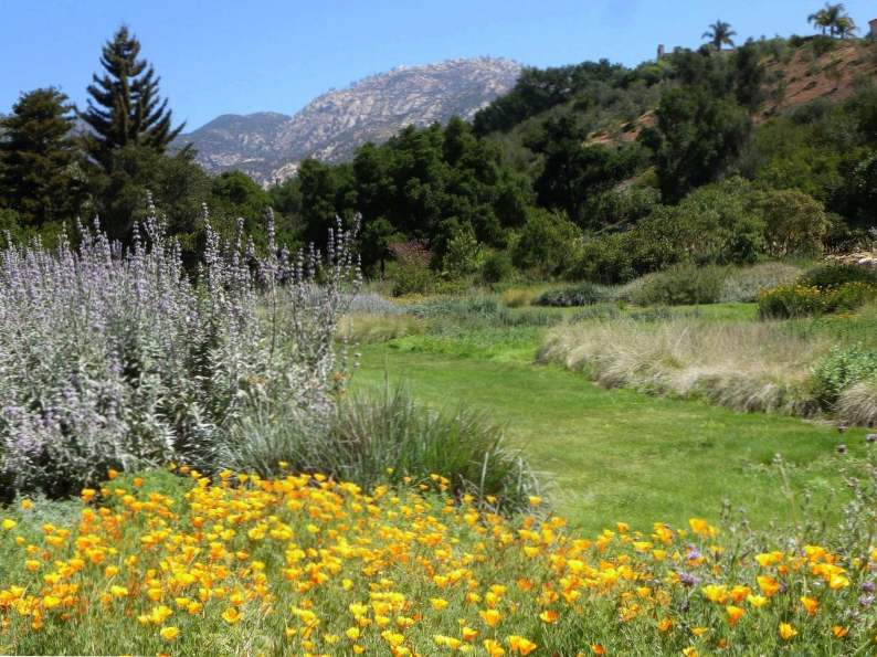 8 best things to do in santa barbara california 5