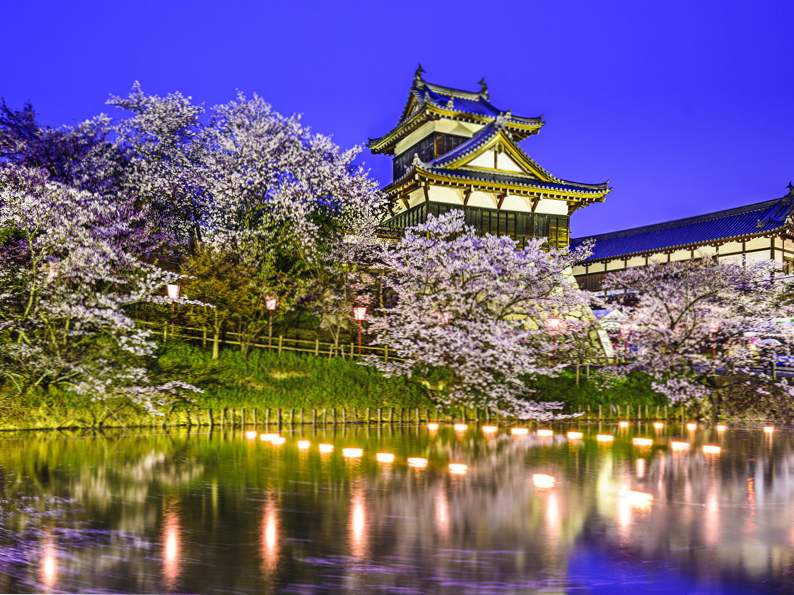 9 best places in japan to see cherry blossoms 2