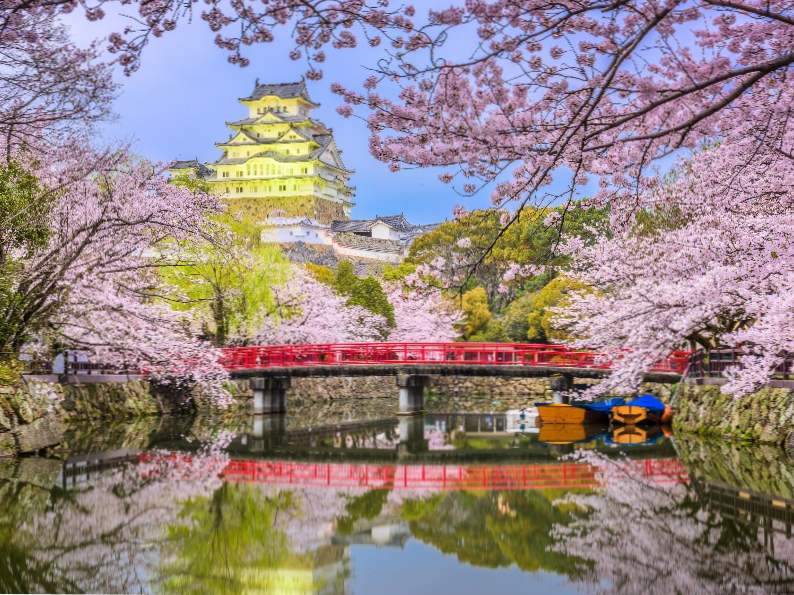 9 best places in japan to see cherry blossoms 4