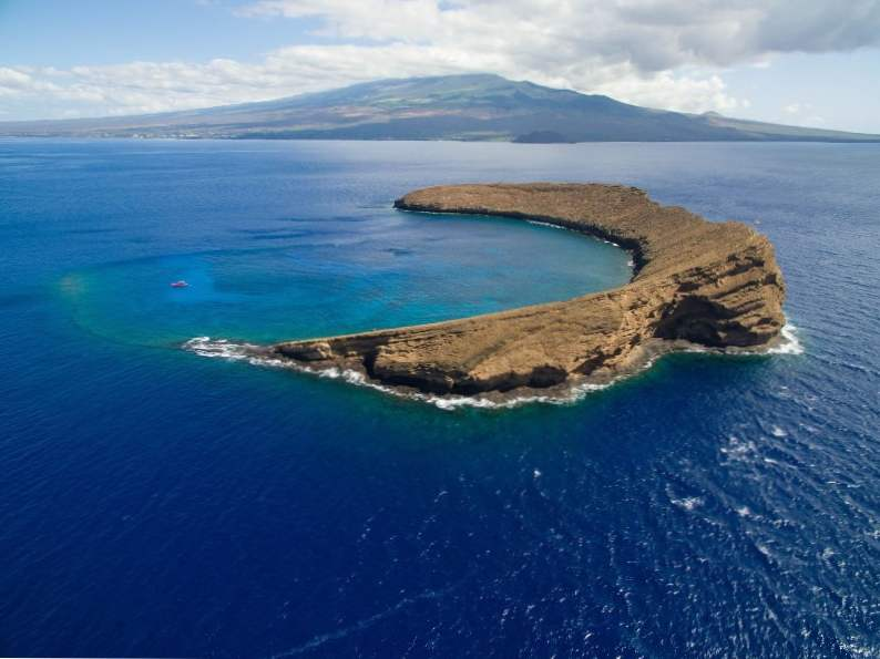 9 best places to snorkel in hawaii 2