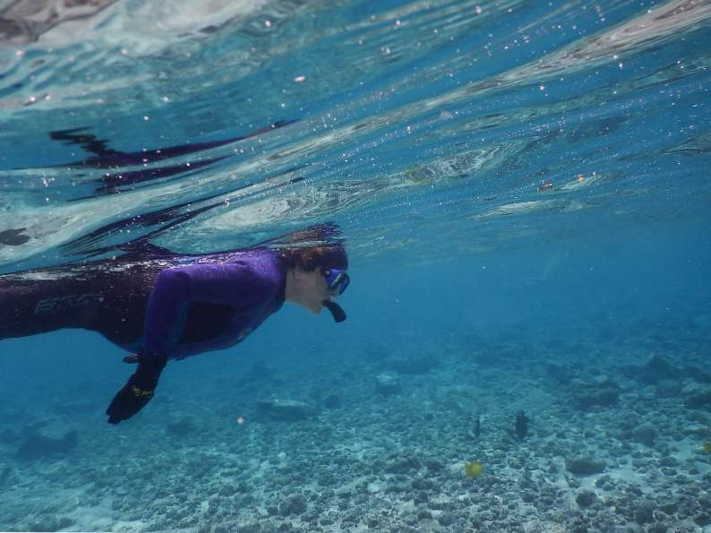 9 best places to snorkel in hawaii 9
