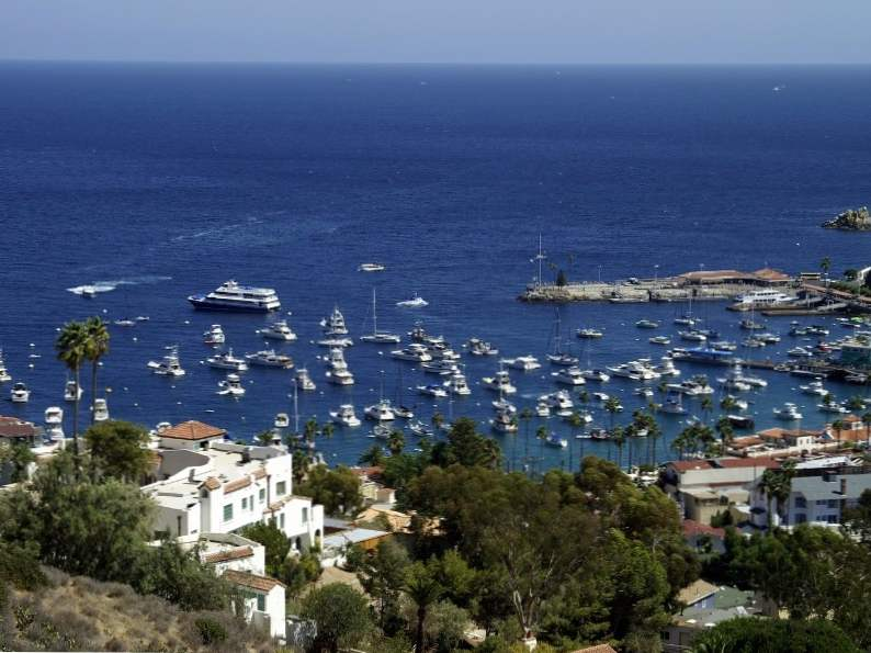 9 best things to do in catalina island california 2