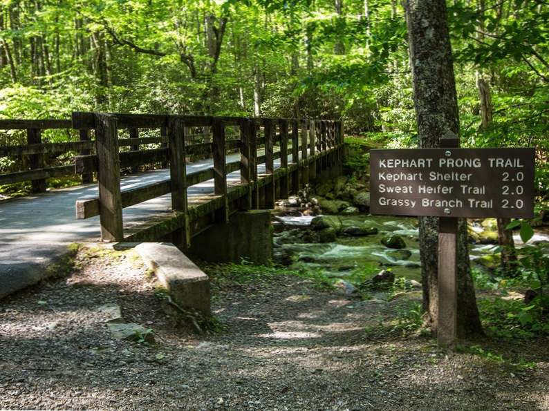 9 best things to do in gatlinburg tennessee
