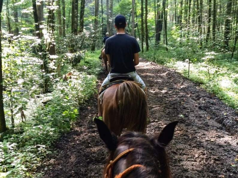 9 best things to do in gatlinburg tennessee 8