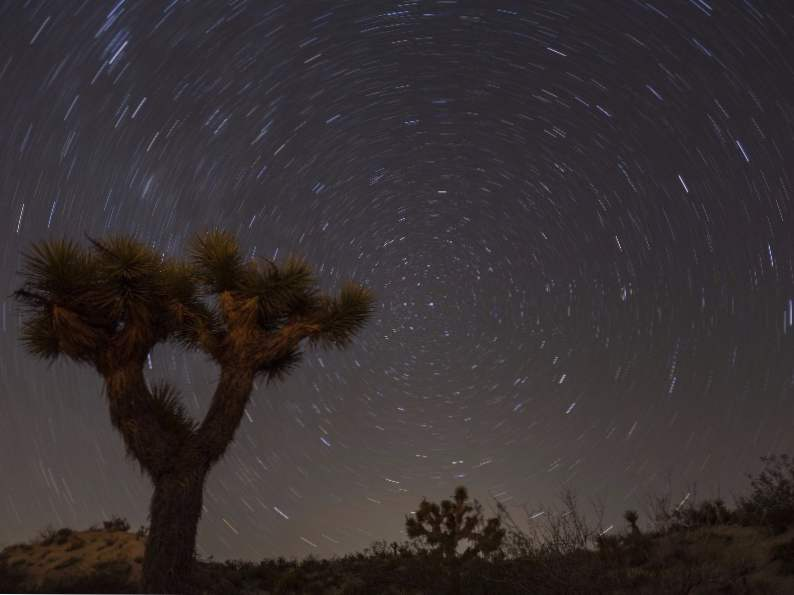 9 best things to do in joshua tree national park 6