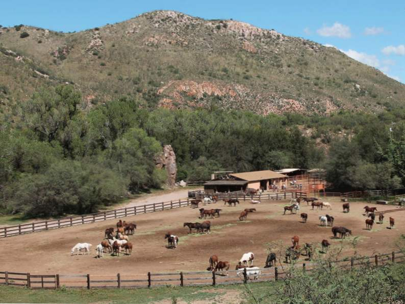 9 top luxury wilderness ranch vacations 4