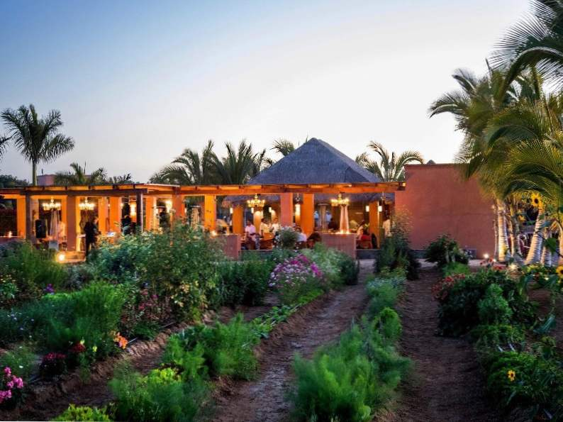 baja california mexicos 9 most mouth watering restaurants 6