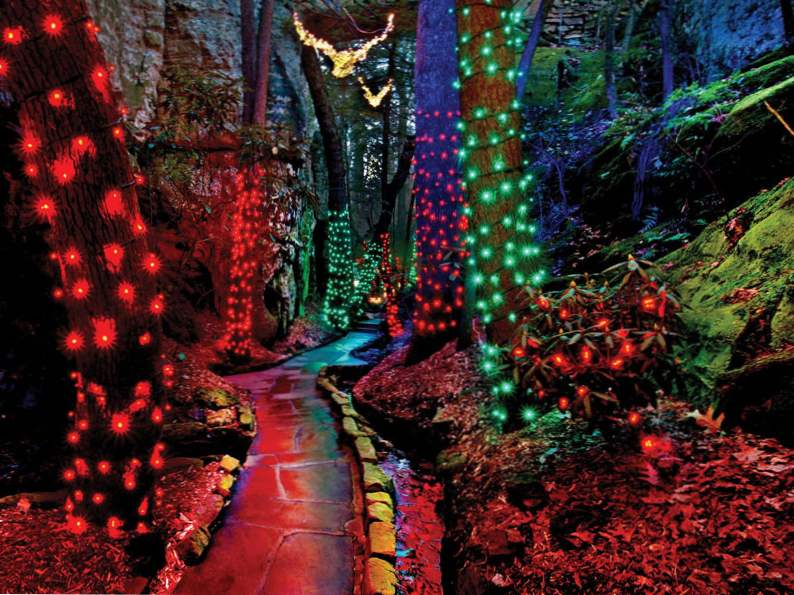 experience the enchanted garden of lights in rock city georgia 5
