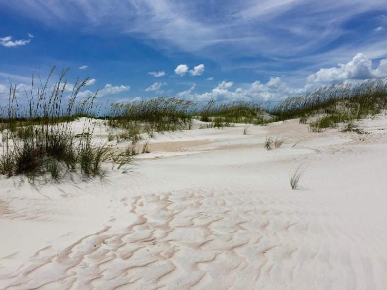 floridas anastasia state park is an outdoor lovers paradise 2