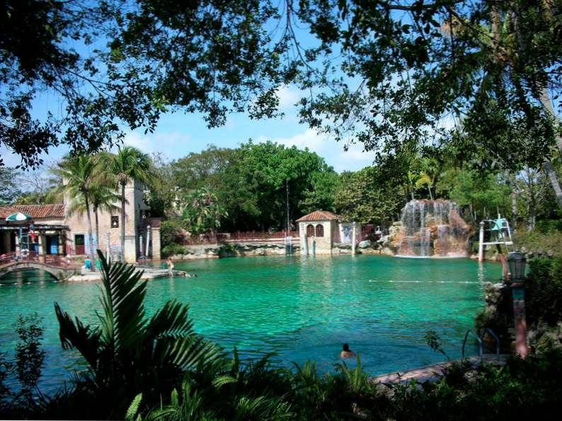 how to spend 48 hours in miami florida 5