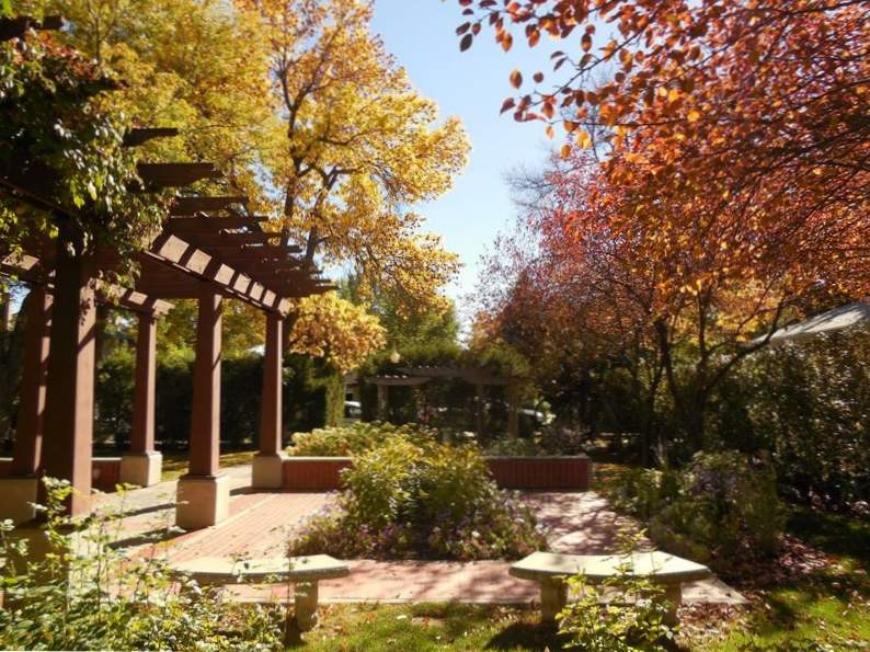 top 10 things to do in billings montana 6