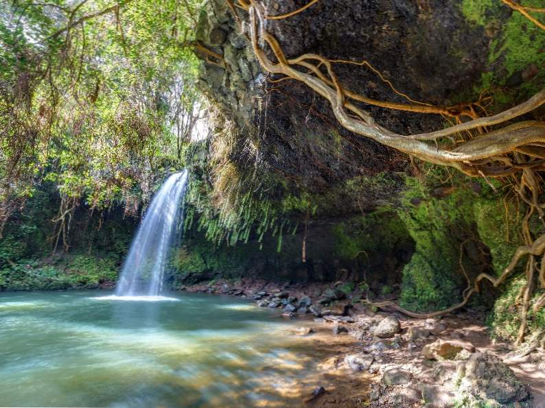 top 10 things to do on the road to hana in maui hawaii
