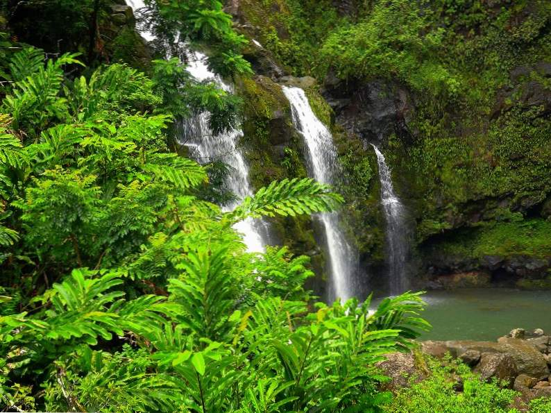 top 10 things to do on the road to hana in maui hawaii 4