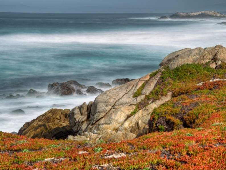 top 8 things to do in monterey california 3