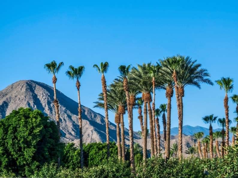 top 9 things to do around palm springs california