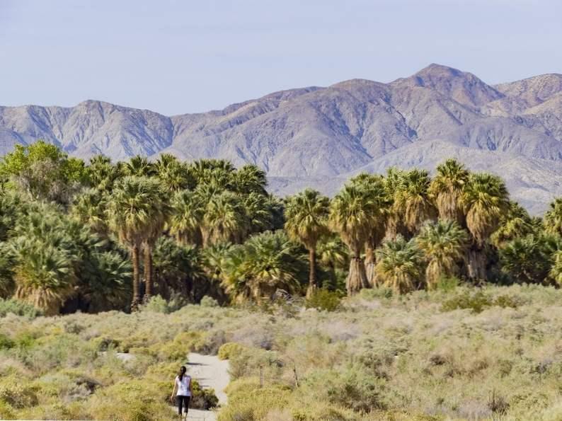 top 9 things to do around palm springs california 2