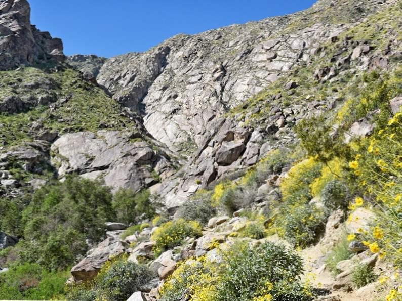 top 9 things to do around palm springs california 5