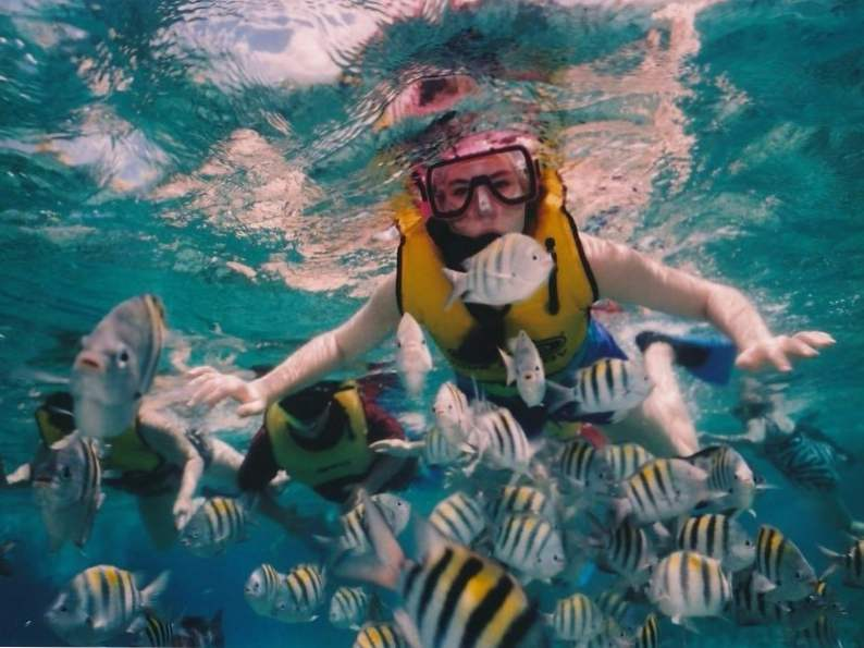 top 9 things to do in cozumel